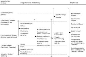 Die Sinne, Integration ihrer Reizwirkung und ihre Endprodukte ( Ayres 2002, S. 103)